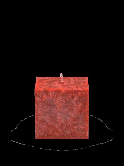 Cervena-6